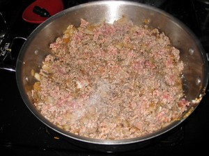 meat and onions