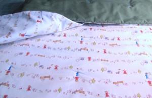 shayne's blanket