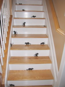 halloween mice 2009