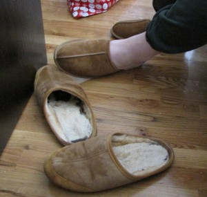 newslippers