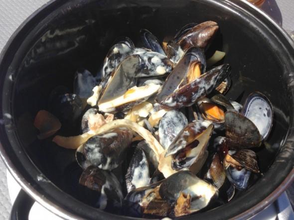 honfluer mussels