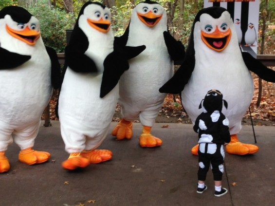 Hannah meets the Penguins