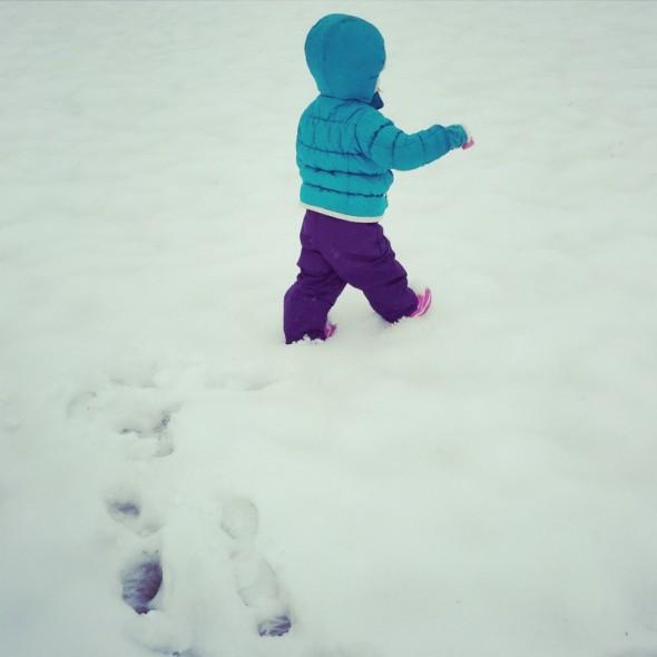 snow 2015 3