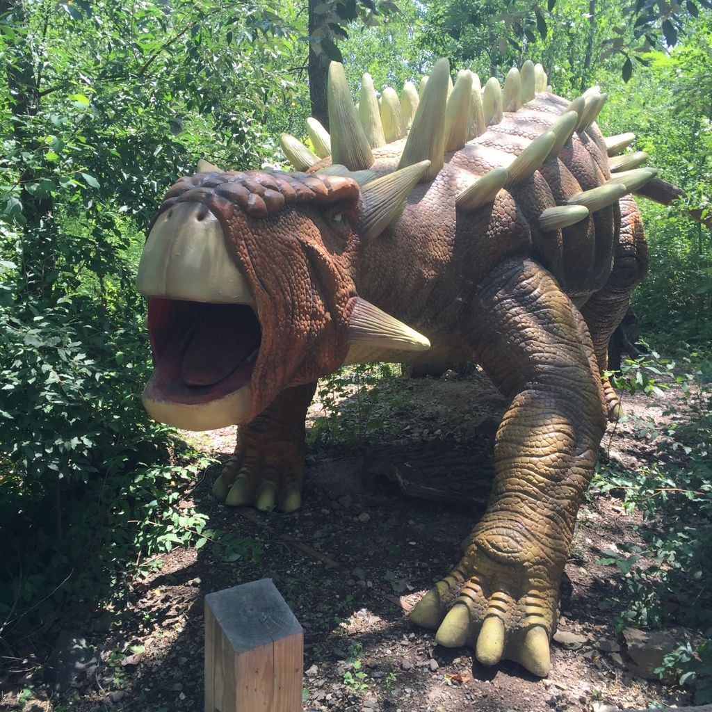 Field Station: Dinosaurs   Jackie Reeve