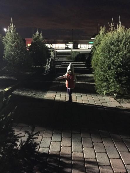 Christmas 2015 25